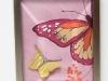 sa-pink-butterflies-closeupwtmk
