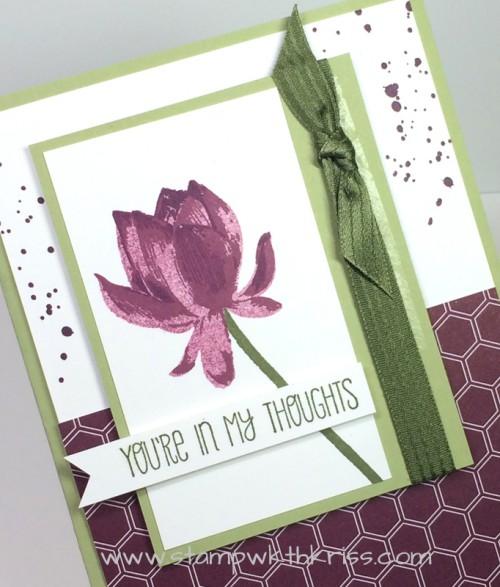 Lotus Blossom Sympathy closeup