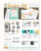 Click HERE for Starter Kit ideas!